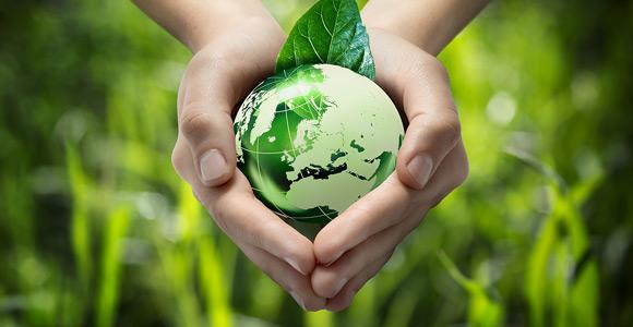 Ecoconception web, les avantages pour la planète et pour votre entreprise, Pic Digital